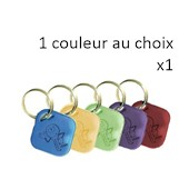 Photo de x1 PORTE CLES GILTZIN